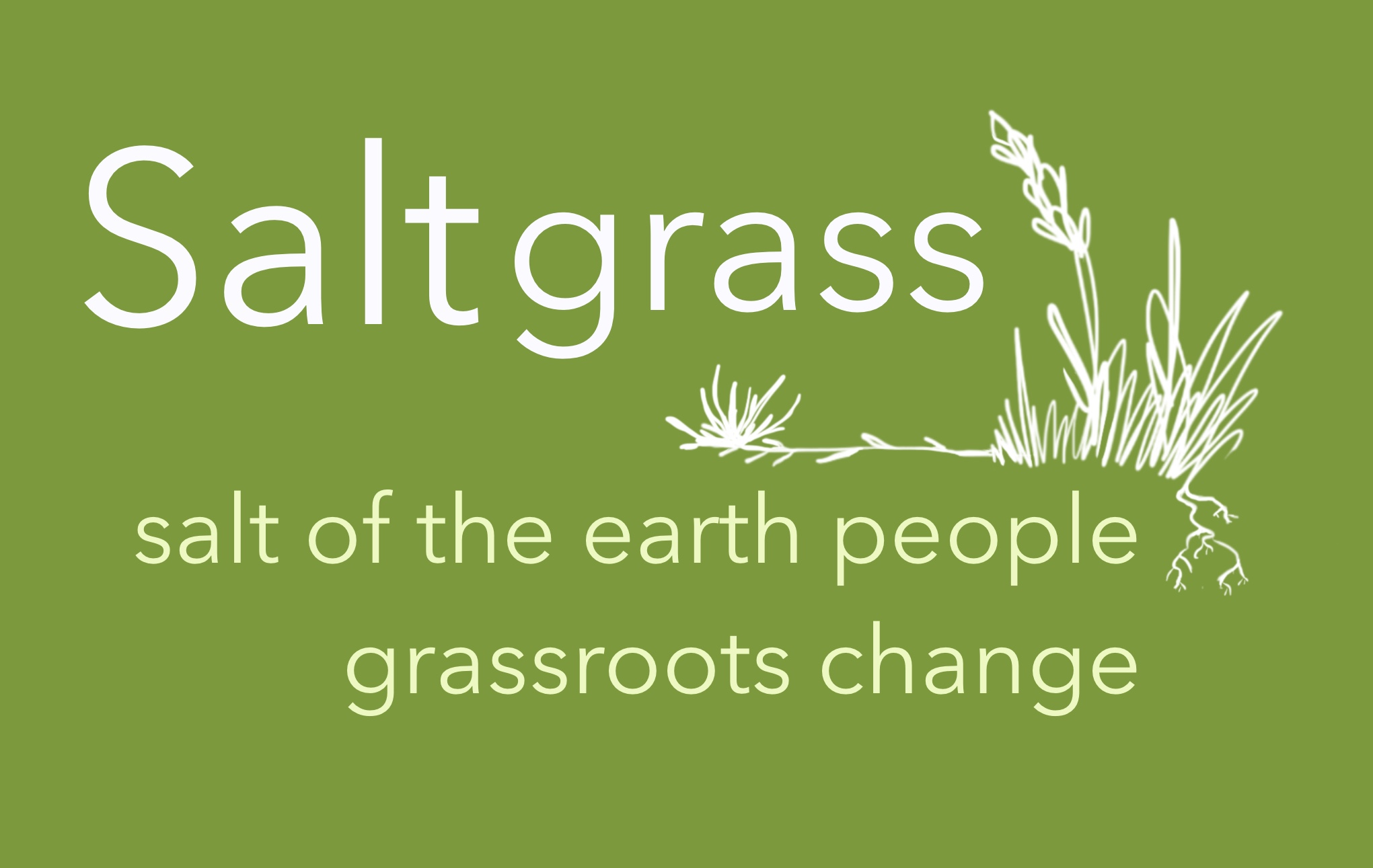 Saltgrass with Allie Hanly on Mountain District Radio