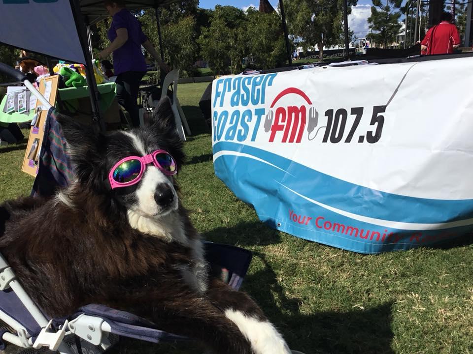 Grooves Radio Show with DesiD with DesiD on Fraser Coast Community Radio